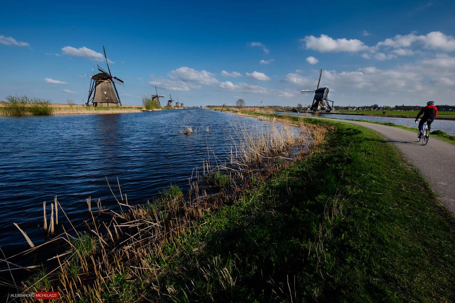 Netherlands-Alessandro-Michelazzi-1