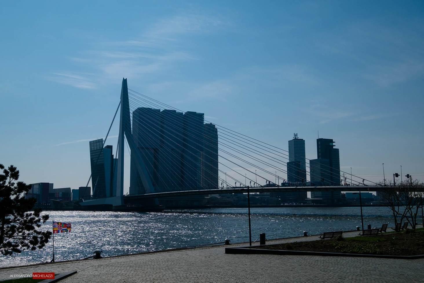 Rotterdam-Photography-Alessandro-Michelazzi-8