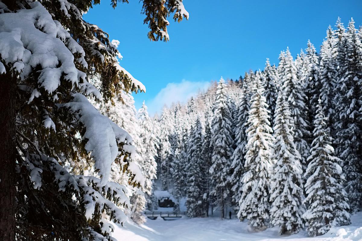 Alps Braies Lake Fujifilm