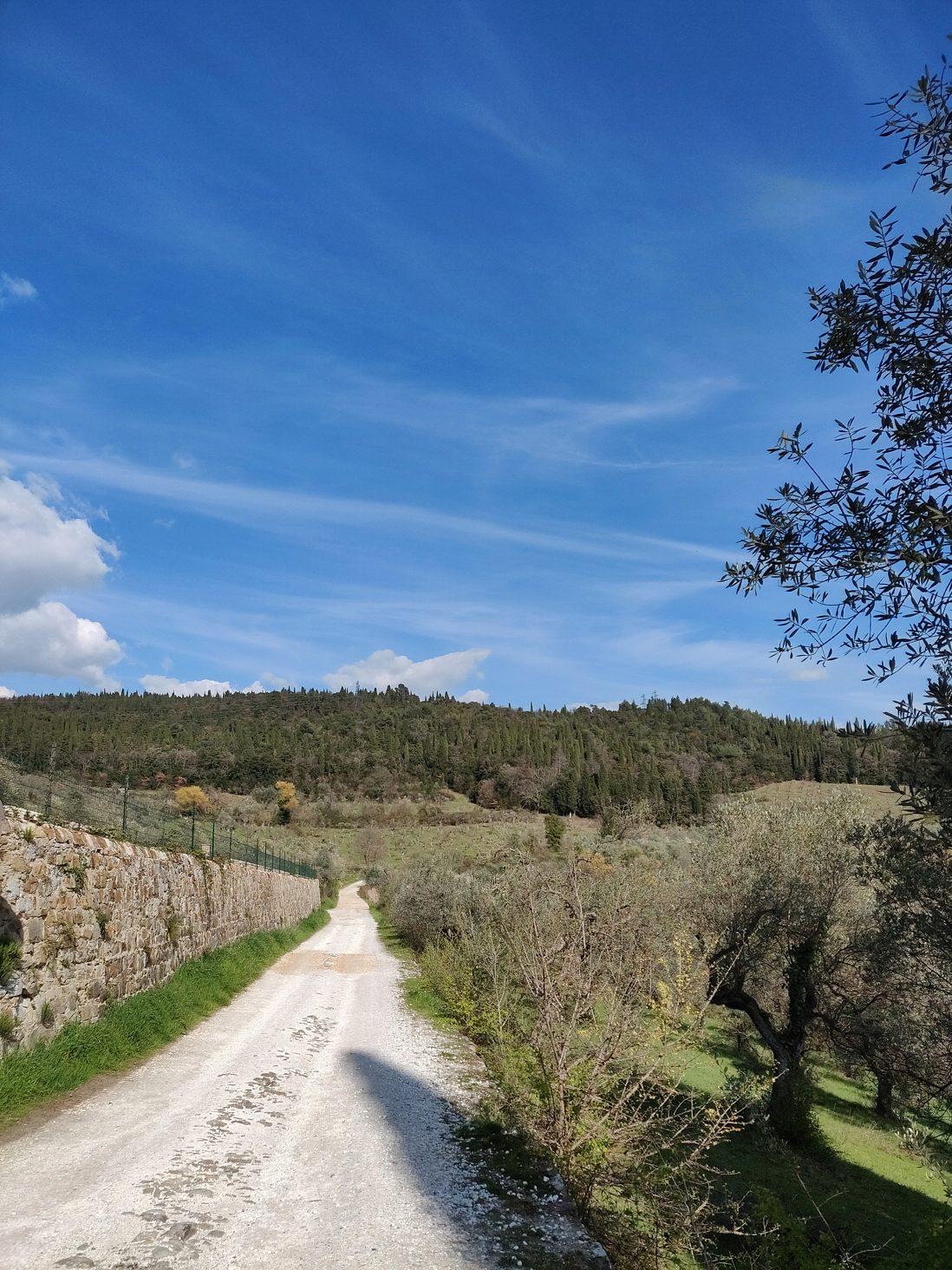 OnePlus 6 Landscape Photo